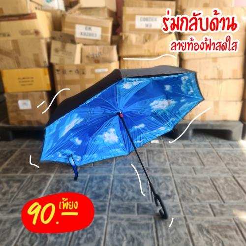 Umbrella-1-01